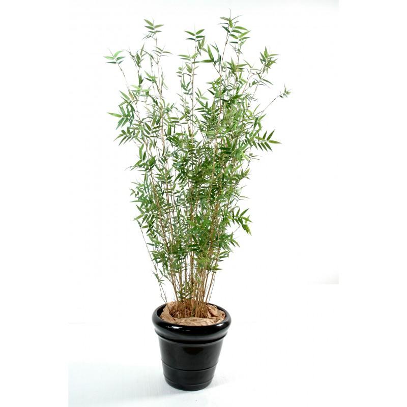 plastique pas cher extrieur depuis quelques annes le march des arbustes a fait beaucoup deffets surtout au niveau des plantes synthtiques - Arbuste Artificiel Exterieur Pas Cher